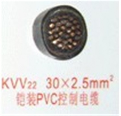 PVC控制電纜KVV22  30芯2.5
