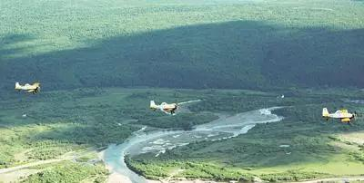 无人机飞播市场研究报告:市场短期...