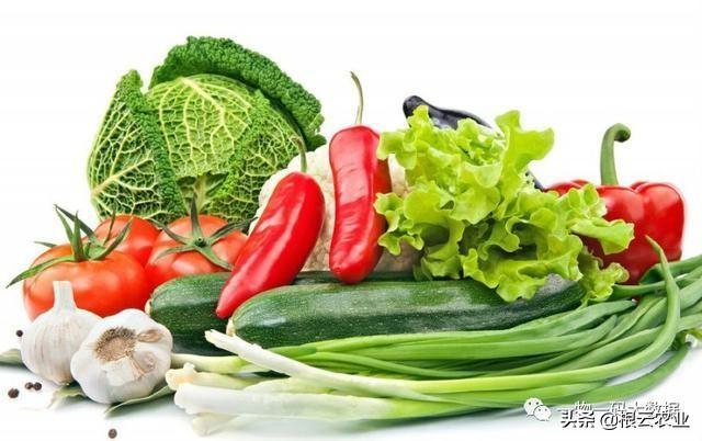 綠色農産品爲什麽要溯源?