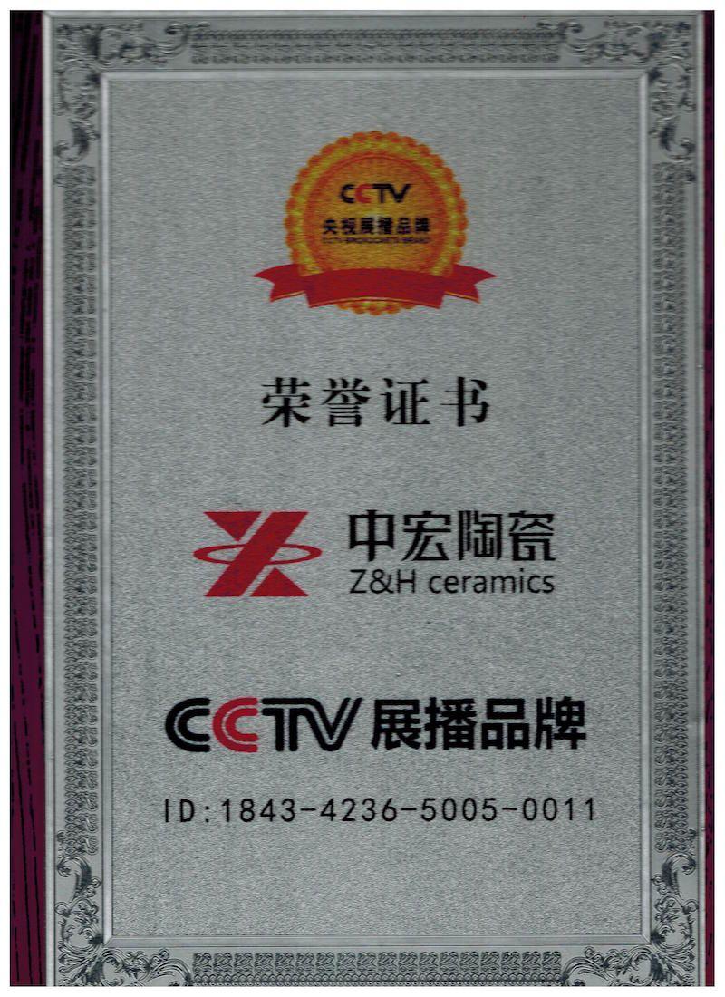 CCTV展播品牌
