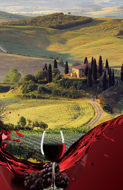 致力于进口红葡萄酒的进口贸易