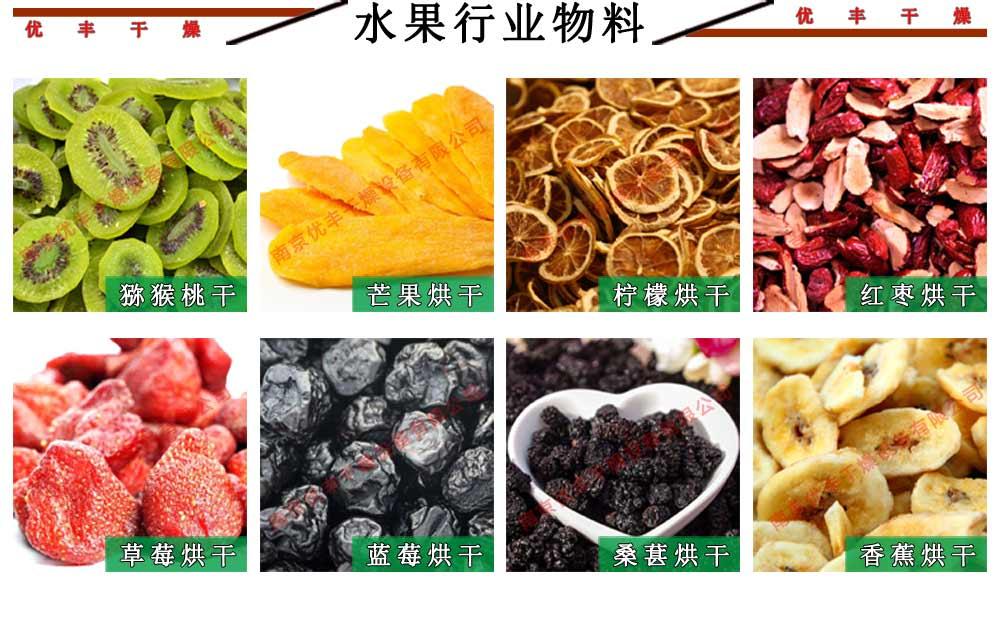 水果行業用熱風循環烘箱