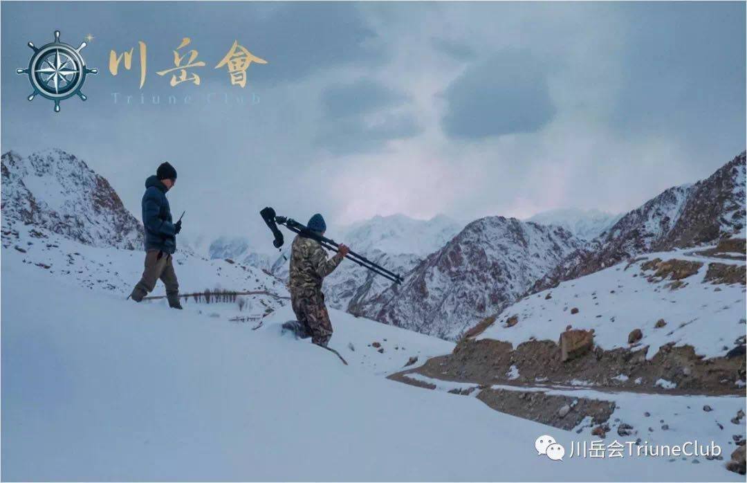 【川岳会直播No.3】2019印度喜马拉雅山雪豹追踪+洒红节远征-雪豹篇