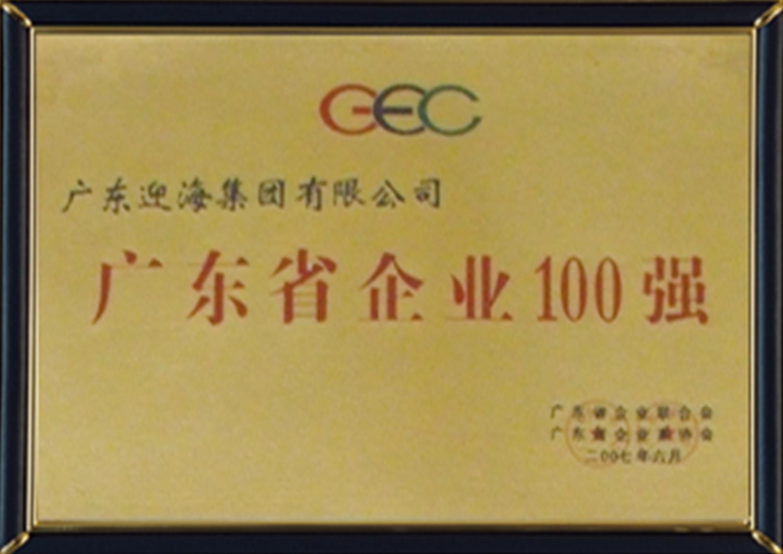 10—廣東省企業100強-2007年