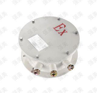 防爆预置位解码器碳钢ⅡC(圆形)