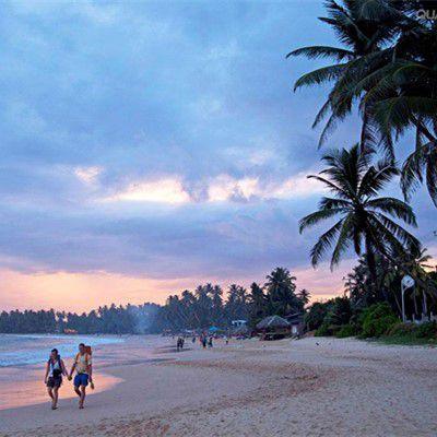 一价全含  斯里兰卡六晚八天