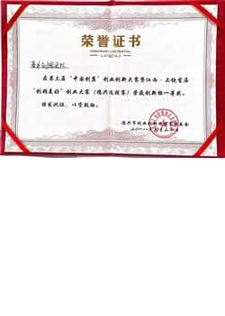 中国创翼 荣誉证书