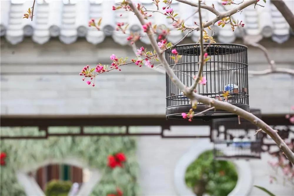 鳥籠匠人 精雕細琢四十年,初心守護籠之藝