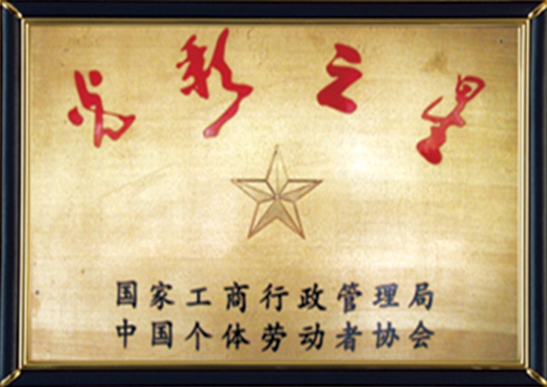 4-光彩之星 (1)