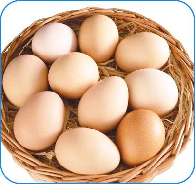 鲜蛋类检测