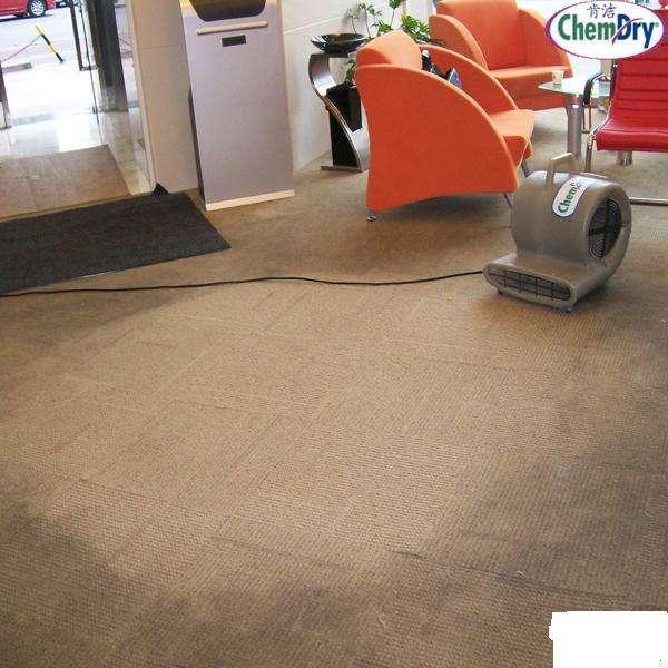 軍威地毯清洗案例