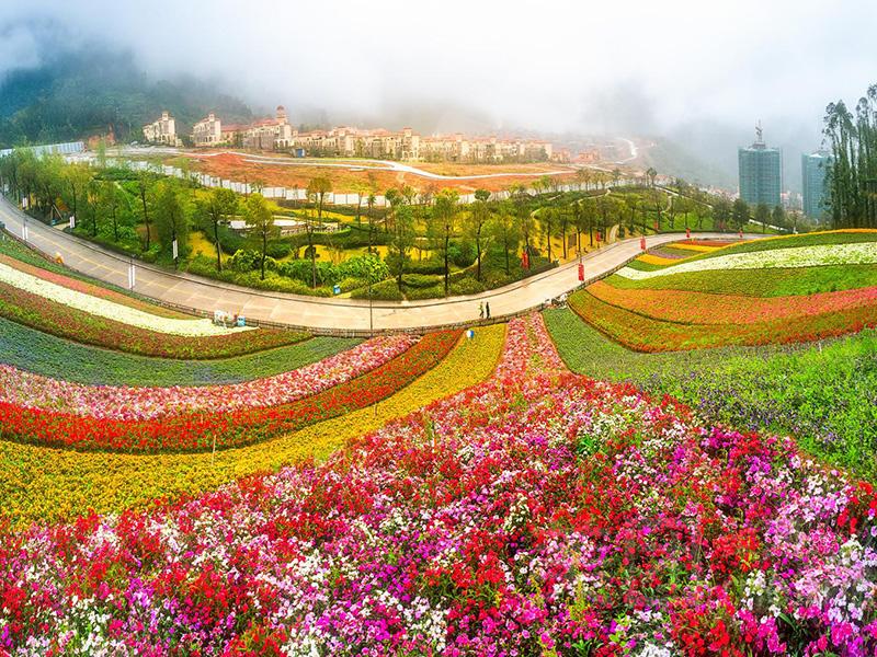 漳州十里藍山