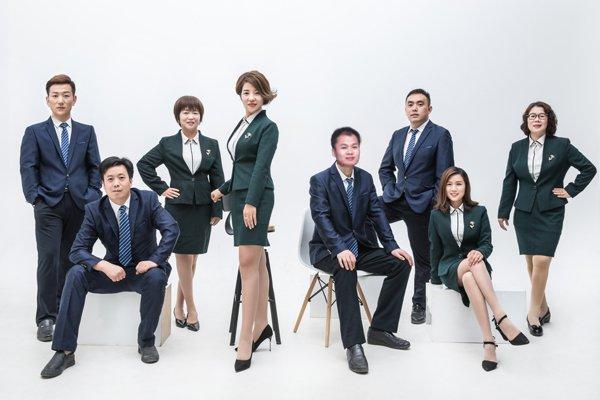 财税筹划团队