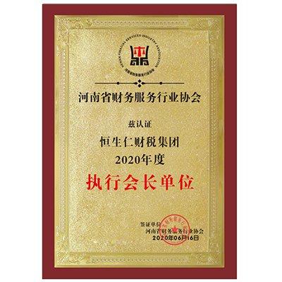 河南省財務行業服務協會執行會長單位