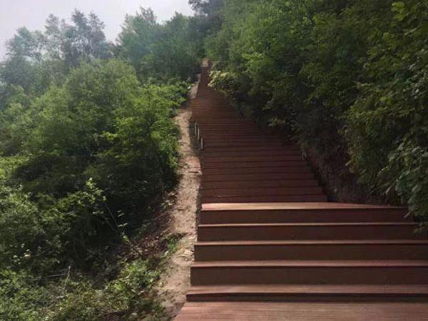 兰州市石佛沟国家森林公园