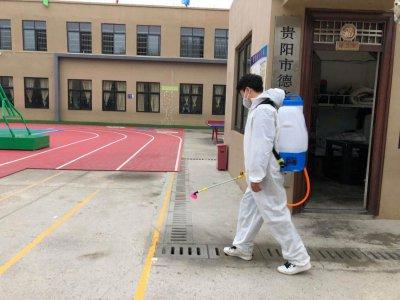 学校虫害防治