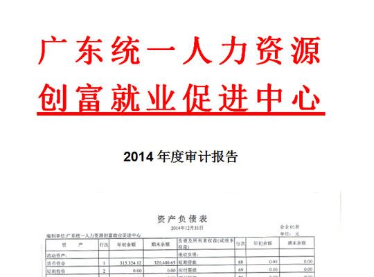 2014年度审计报告