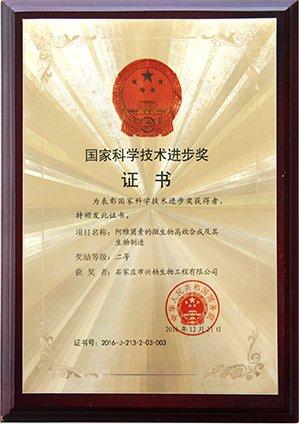 National Science and Technology Progress Award