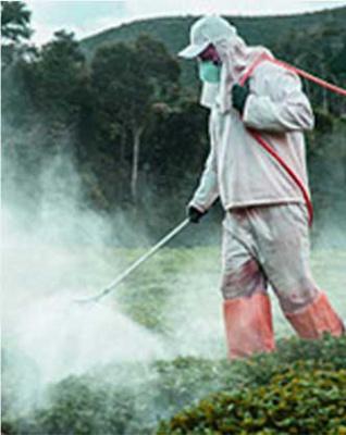 Insecticidal spectrum