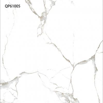 QP61005