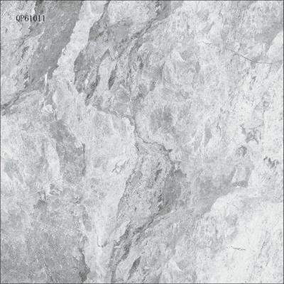 QP61011