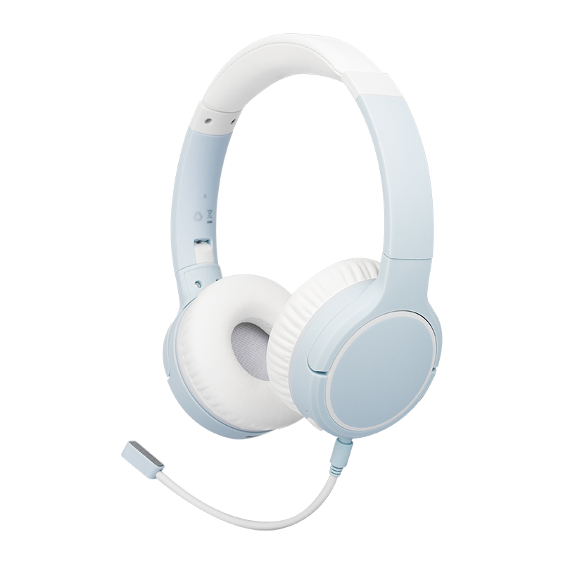 Noise cancelling wireless headphone NB-1700