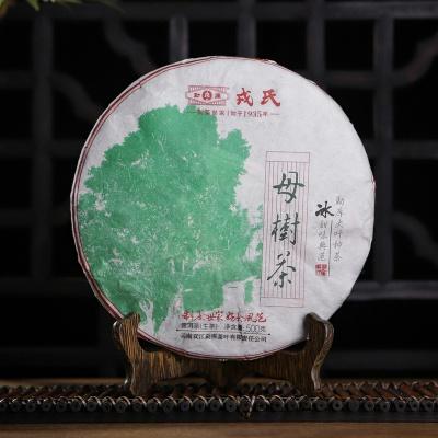 勐库戎氏2020年母树茶 普洱茶 生茶饼 500克