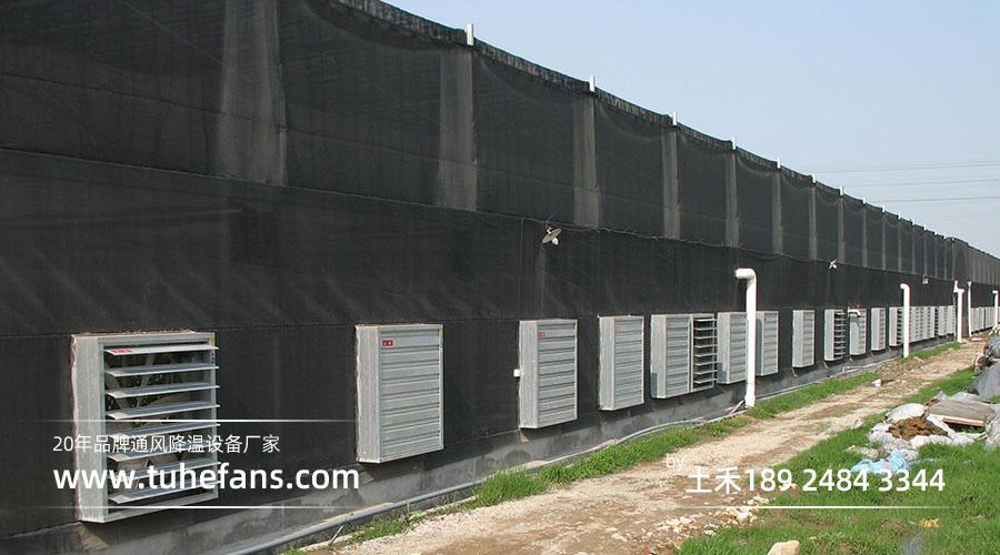 温室大棚通风降温工程案例-陈村花卉世界