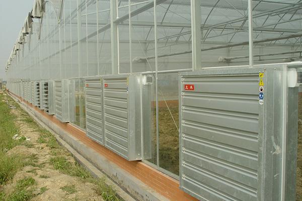 温室大棚通风降温高效节能解决方案