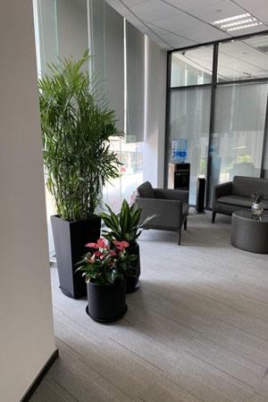 銀行植物租賃方案