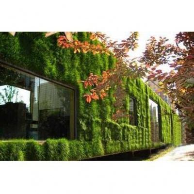 立體空間綠化