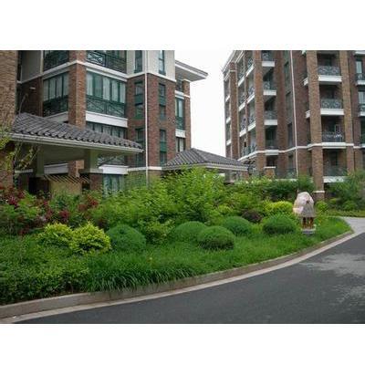 住宅小區綠化