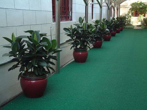 寫字樓植物租賃案例