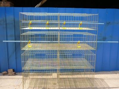 雞籠及生產設備