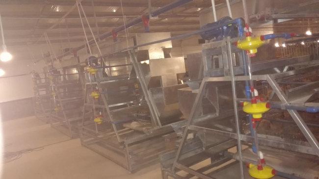 階梯式全自動養殖系統1