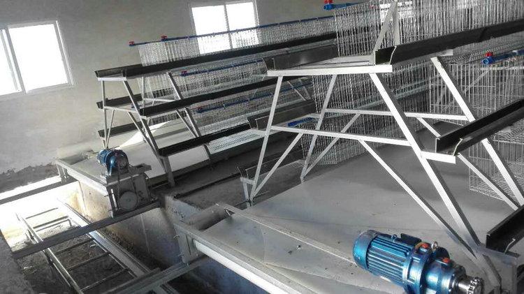 階梯式輸送帶自動喂料系統11