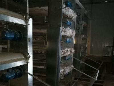 糞便發酵處理系統6