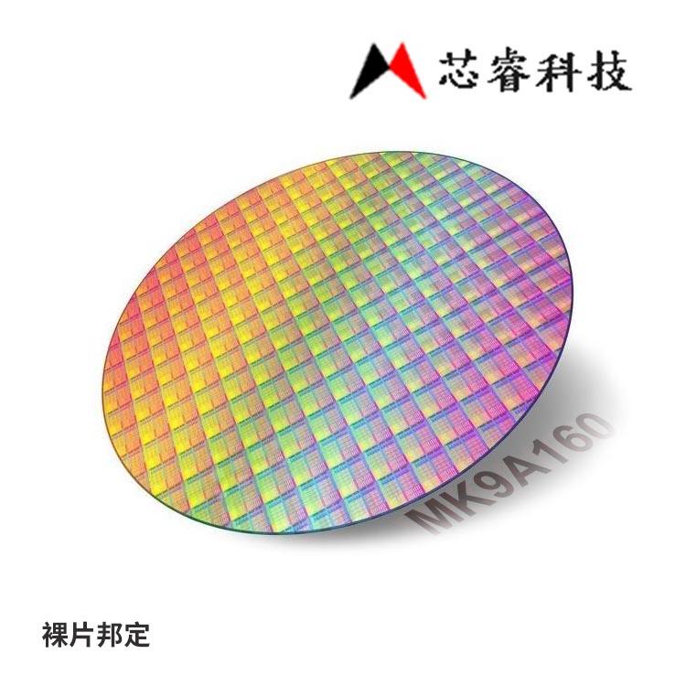 台湾芯睿8bitLCD单片机MK9A160