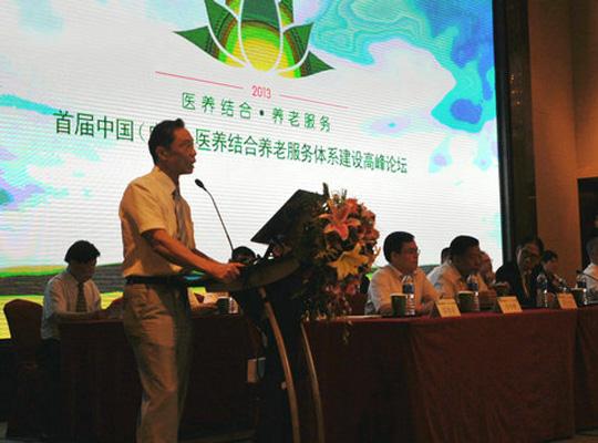 2013年首届中国(广东)医养结合养老服务体系建设高峰论坛在广州举行