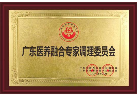 广东医养融合专家调理委员会