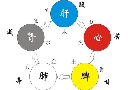 广东医养融合专家调理委员会服务模式