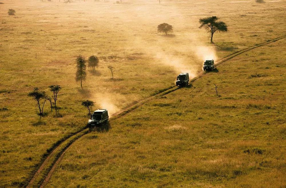 2020年全年有团期 | 南部非洲四国21天,狂野奇幻之旅