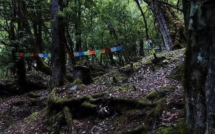2020春節徒步 | 太子關穿越至瀘沽湖