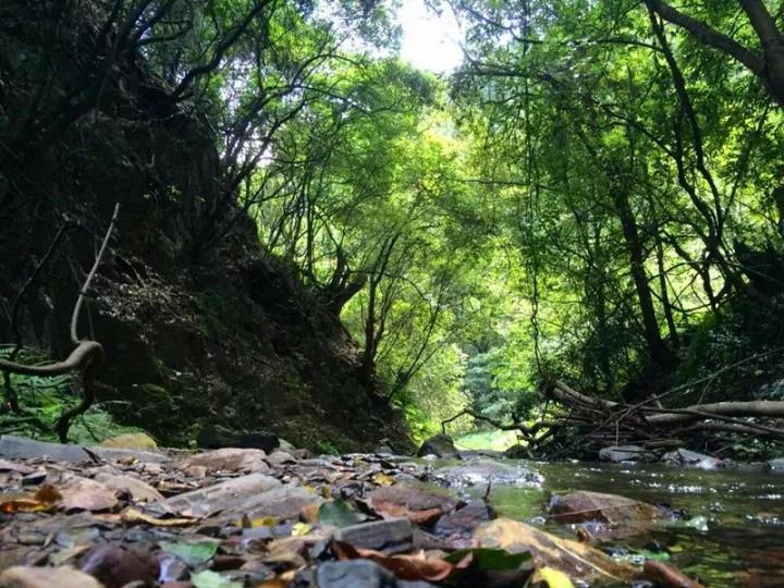 徒步   一个隐藏在安宁的人间仙境——水神桥穿越至勤丰营!