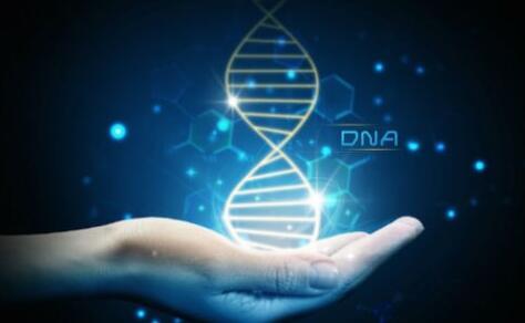 屡破奇案,DNA鉴定技术有何...