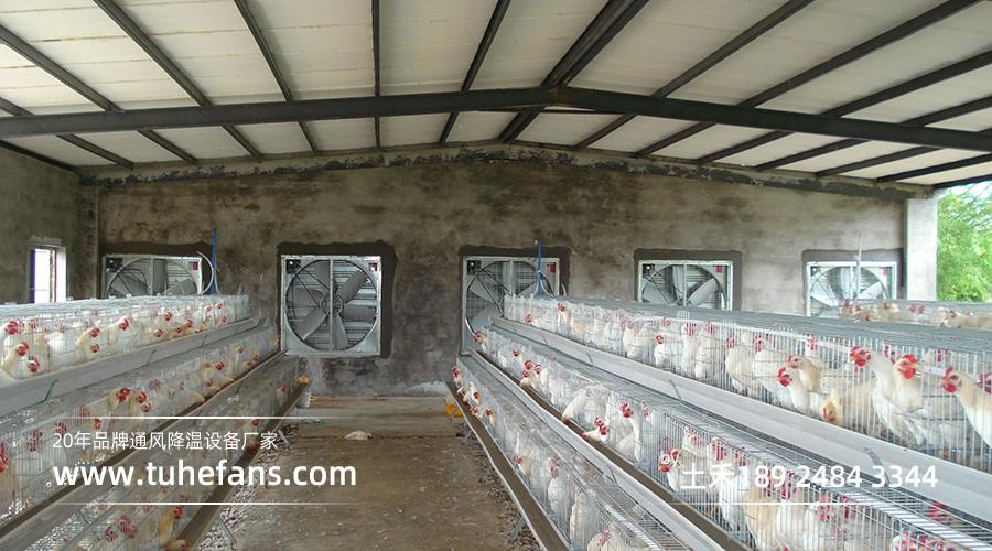 温氏集团白羽鸡养殖基地(场)通风降温工程项目