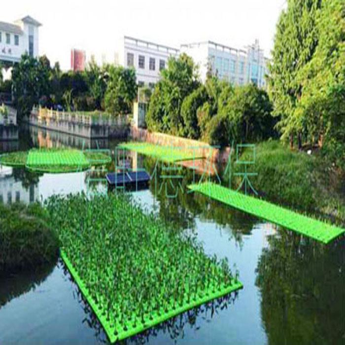 不同覆盖度生态浮床净化污染水...