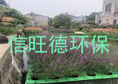 北京生物浮床案例展示