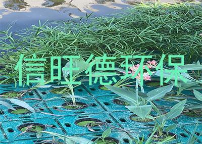 苏州生物浮床案例展示