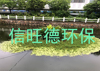 上海生态浮床案例展示